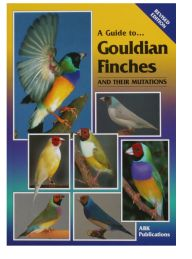 A Guide to Gouldian Finches and their Mutations | Laraine's Lady Gouldians