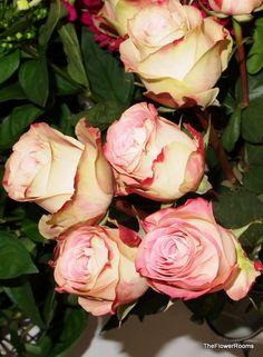 Upper Secret Roses