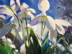 """""""snowdrops"""" oil on canvas by Trevor Waugh"""