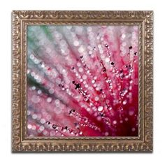 Trademark Fine Art Pink Melody Canvas Art by Beata Czyzowska Young, Gold Ornate Frame, Size: 11 x 11