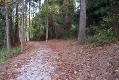 Queen City National Recreation Trail in historic Queen City Park, Tuscaloosa