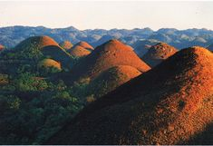 Bohol's chocolate hills (Philippines)