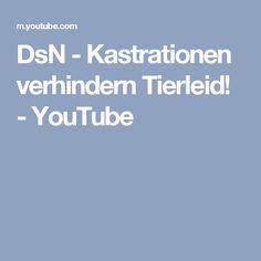 DsN - Kastrationen verhindern Tierleid! - YouTube