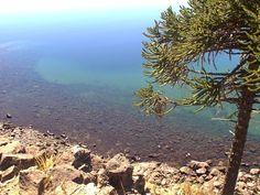 Villa Pehuenia, Patagonia, Water, Outdoor, Vacations, Argentina, Aqua, Outdoors, Outdoor Games