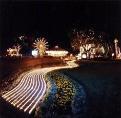 Neverland at night