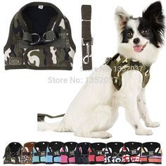 Small Puppy Medium Large Big Dog Harness and Walking Leads Set  Pet Winter Vest products for dogs // FREE Shipping //     Get it here ---> https://thepetscastle.com/small-puppy-medium-large-big-dog-harness-and-walking-leads-set-pet-winter-vest-products-for-dogs/    #lovecats #lovepuppies #lovekittens #furry #eyes #dogsitting