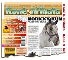 Říjen 2006 Welsh Pony, Equestrian, Magazines, Horses, Movie Posters, Journals, Film Poster, Horseback Riding, Popcorn Posters