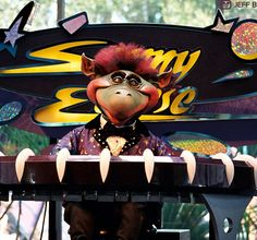 Sonny Eclipse performing at Cosmic Ray's Starlight Cafe in the Magic Kingdom