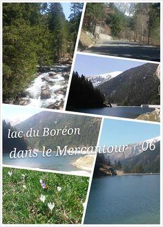 Venez voir le lac du Boréon à Saint Martin du Vésubie ( dans le Mercantour) Royaume de la pêche à la truite au coté du parc Alpha et les loups. Le lac est entouré de sapins. parking et restaurant ou pic nic, une beauté pour les yeux ,.. n'oubliez pas le gilet (1500m d'altitude)  et l'appareil photos