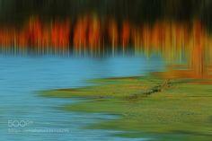 湖边 (Qingtao Lee / Kunming,Yunnan Province / China) #Canon EOS 5D Mark III #landscape #photo #nature