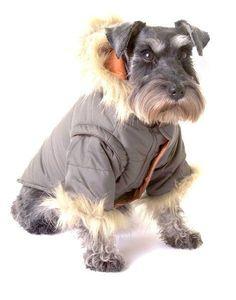 Nosy Dog Parka in Khaki - Clothes & Apparel - Dog