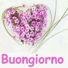 Buongiorno cari amici e buona giornata