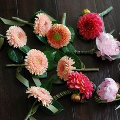 Image result for dahlia boutonniere