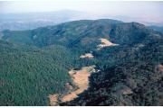 Places to Camp in SD: Palomar Mountain