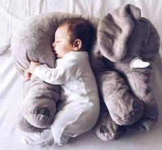 Sweet. Baby. They deserve all the comfort in the worldhttp://goo.gl/o4JFYb