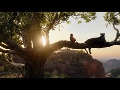Behind the Scenes Video Shows How The Jungle Book Was Filmed in Downtown LA