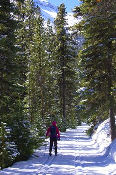 Skiing at Skogan Pass in Alberta, a fun Canadian winter travel idea.