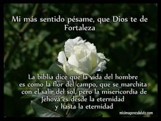 Condolences Quotes, Condolence Messages, Gods Love Quotes, Spanish Phrases, Feeling Depressed, Father Quotes, Inspirational Phrases, Angel Pictures, Jehovah