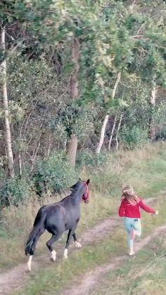 Funny Horses, Cute Horses, Pretty Horses, Beautiful Horses, Animals Beautiful, Cute Baby Pictures, Animal Pictures, Horse Riding Quotes, Horse Videos