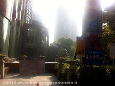 shanghai | cinese garden in backlight