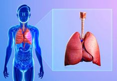 The COPD stages discussed below help in understanding the disease and its treatment measures. There are four stages which degenerate the health of lungs. Information about the various stages in COPD is provided in the article below.