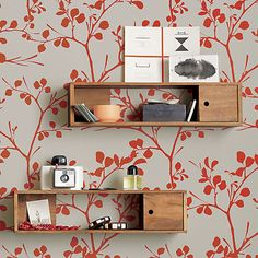 Nice storage shelf for cameras.