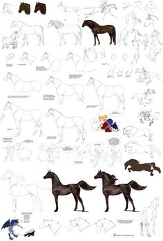 Horses tutorial by Precia-T on deviantART