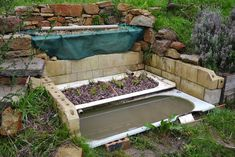 Greywater is a fabulous, though often underused, household resource that should be used wherever possible. Here's a home made 3 bathtub greywater system that's simple but effective.