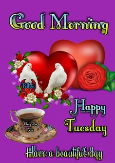 Good Morning Flowers Pictures, Good Morning Photos, Happy Tuesday Morning, Happy Day, Beautiful Flowers Garden, Beautiful Day, Good Morning Wishes Quotes, Tuesday Quotes, Happy Friendship Day