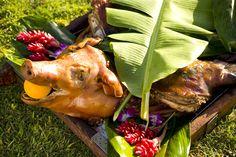 Hawaiian Luau Pig Roast