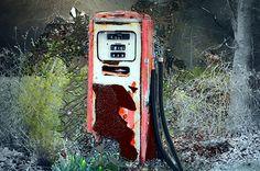 "All Pumped Up by Linda M Gardner digital art ~ 14"" x 11"""