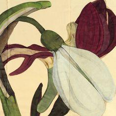 Works on paper by Sarah Graham #art#artist#botanic#workonpaper#bigscale @lyndsey_ingram