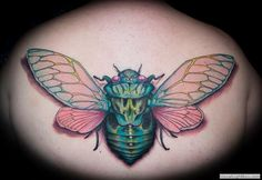 Tattoo Portfolio |  Tattoo Nouveau  By: David DeRue Antennae of Inspiration: The Insect Art Project