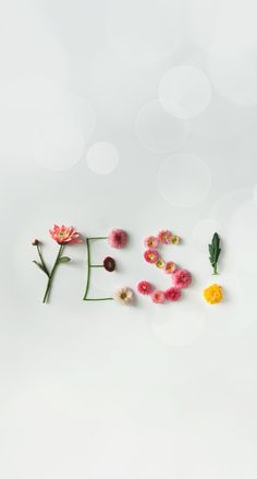 Yes // wallpaper, backgrounds