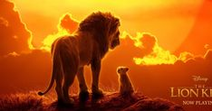 Disney has officially announced the home release details and store exclusives for Jon Favreau's The Lion King remake. Jon Favreau's The Lion King was apart of Disney's record-brea… Lion King Remake, Lion King 2, Lion King Movie, John Oliver, Donald Glover, Disney Usa, Live Action, Action Film, Shakespeare