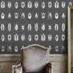 Beetle Jewels beetle insect Wallpaper by Woodchip & Magnolia