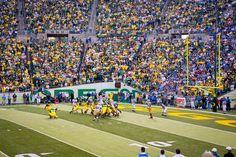 UCLA Bruins at Autzen Stadium in Eugene, Oregon Ucla Bruins, Eugene Oregon, Oregon Ducks, Product Photography, Editorial, Soccer, Sports, Hs Sports, Futbol