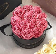 The Small Round Eternity® Rose arrangements from Venus ET Fleur® are sure to make a big statement when you send them to your loved ones. Featuring 11 to 14 of our signature roses, it is the perfect gift of luxury. Order yours today. Beautiful Rose Flowers, Fresh Flowers, Box Roses, Pink Roses, Rose Arrangements, Flower Boxes, Rose Buds, Bouquet, My Favorite Things