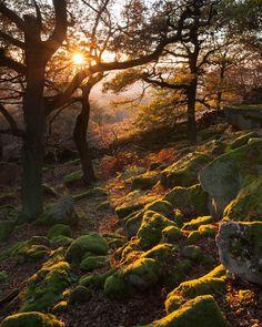 Fotograf Gardom's Edge von James Mills auf 500px