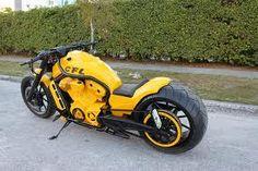 Harley Davidson News Harley Davidson V Rod, Harley Davidson Street, Harley Davidson Motorcycles, Motorcycle Types, Motorcycle Design, Motorcycle Gear, Custom Street Bikes, Custom Bikes, Animals