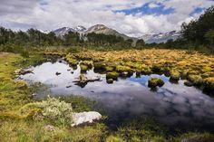 Reserva natural Arakur, em Ushuaia