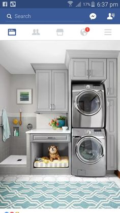 Laundry and dogs room