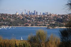 Sydney Harbour - Spit to Manly Hike