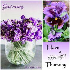 Happy Thursday Everyone! ღ❁ღƤℓҽąʂҽ Ƒҽҽℓ Ƒɽҽҽ ƬᎧ ƤᎥɳ Ꮗɦą৳ ƴᎧմ ᏝᎥƙҽ! ƝᎧ ƤᎥɳ ᏝᎥɱᎥ৳ʂ! Ʈɧąɳƙ ϒσմ Ƒσŗ ƑσℓℓσωᎥɳɠ ᘻƴ ᙖoąŗɗʂ! ᏋɳᏠᎧƴ , Ꮳσɱҽ ᙖąƈƙ Ꭷƒ৳ҽɳ, ąɳȡ Ӈąƥƥƴ ƤᎥɳɳᎥɳɠ~ ☘☘ Ïŕìŝђ €ƴẻŝ ☘☘ღ❁ღ