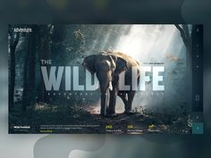 Wild Life - Landing Page - Best Picture For Web Design corporative For Your Taste You are looking for something, and it is going to tell you exactly what you are lo Design Sites, Crea Design, Site Web Design, Graphisches Design, Website Design Layout, Web Layout, Layout Design, Flyer Design, Web Design Trends