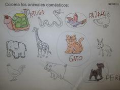 Propuesta de aprendizaje a través de proyectos, donde se trabaja el amor y el respeto por los animales en el ámbito doméstico.  Este Proyecto está dirigido a niñ@s de 4 años. Incluye material para…
