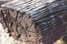 Railway Wood