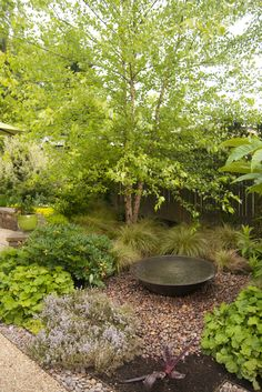 Something as simple as a bowl of water - grant it, a glorious bowl - can add tranquility to a garden.