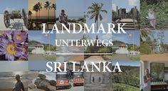 In ihrem Reisebericht verraten Ihnen Sarah Meschede und Dennis Kylau, was Sie auf Sri Lanka nicht verpassen dürfen, zum Beispiel Leoparden und Elefanten, riesige Teeplantagen und den Baum der Erleuchtung.
