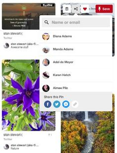 Social Media Like and Share